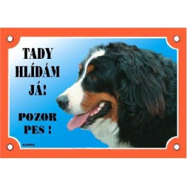 Cedulka Pozor pes